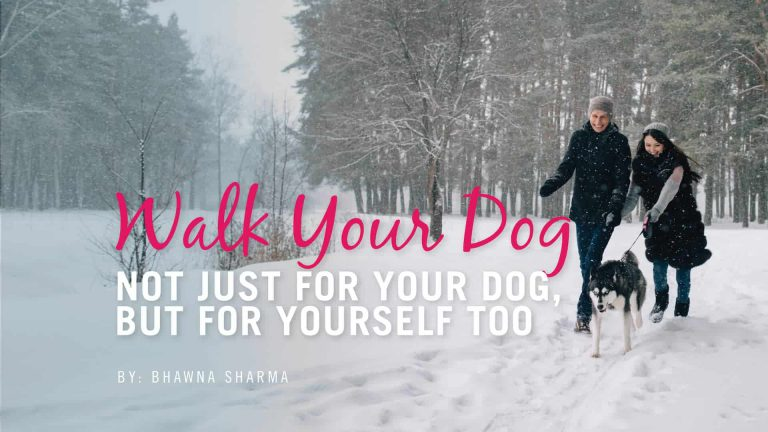 Walk Your Dog! Not Just For Your Dog But For You Too.
